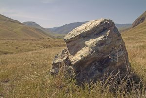 Big rock in field.
